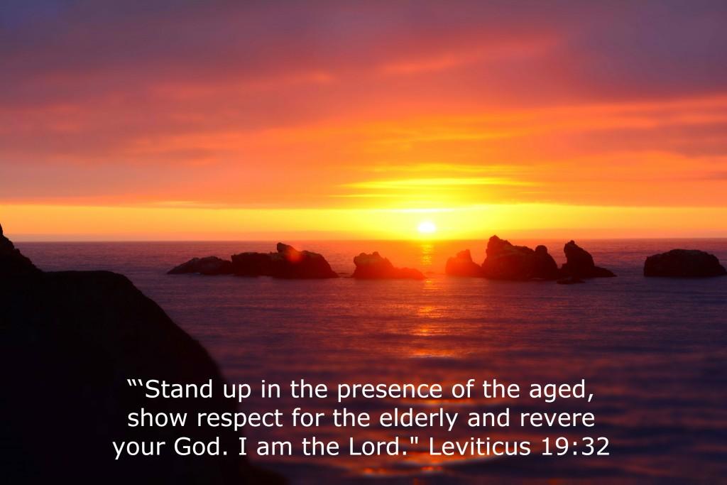 Leviticus 19-32